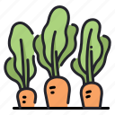 carrot, food, health, healthy, plant, vegan, vegetable icon