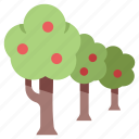 farm, forest, goods, grow, plant, product, tree