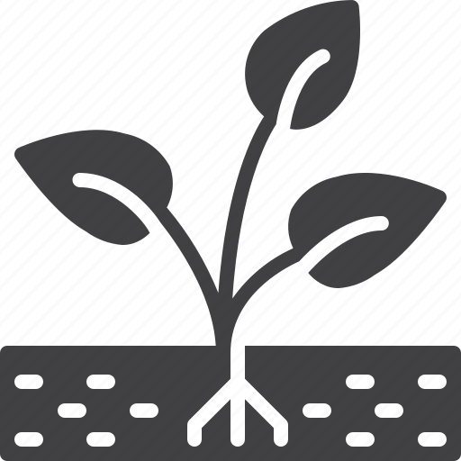 grow, plant, sprout icon