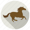 animal, animals, farm, horse icon