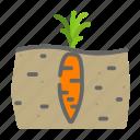 beverages, carrots, farming, food, groceries, soil