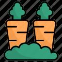 carrot, vegetables, carrots, vegan, diet, organic, healthy food