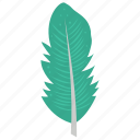 feather, flight feather, plumage, plume, quill feather icon