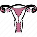 female, feminine, feminist, uterus, vagina, woman, womb icon