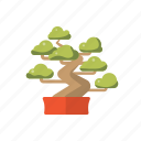 asia, bonsai, feng, shui, tree icon