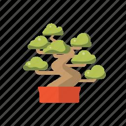 asia, bonsai, feng, shui, tree icon