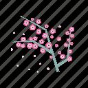 asia, feng, japan, sakura, shui, spring icon
