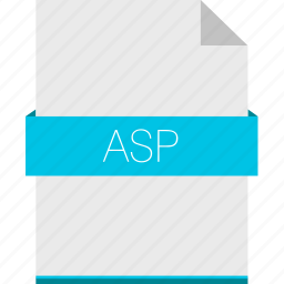 asp, extension, file, format, programming, web icon