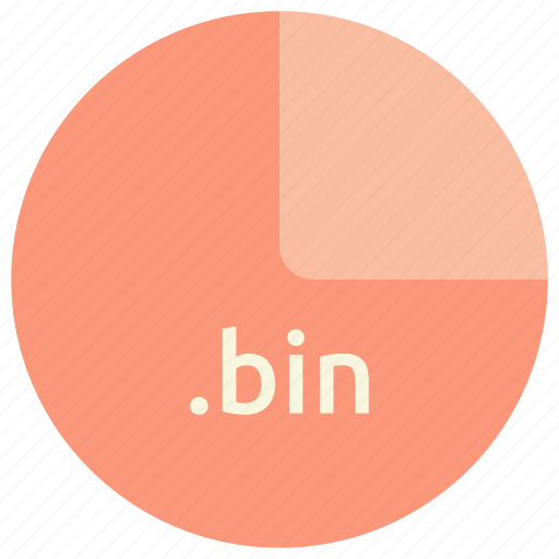 bin, extension, file, format icon