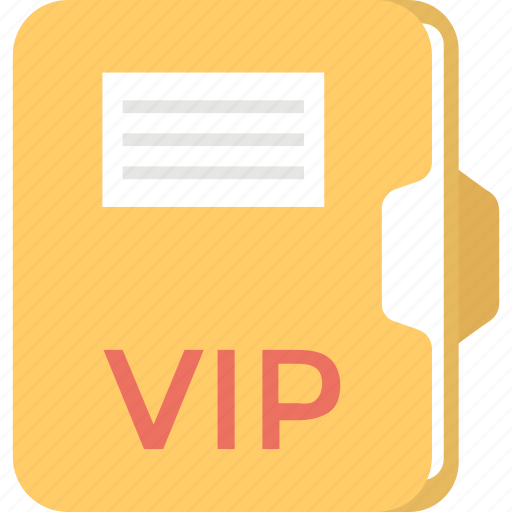 exclusive file, important file, urgent file, valuable documentation, vip folder icon