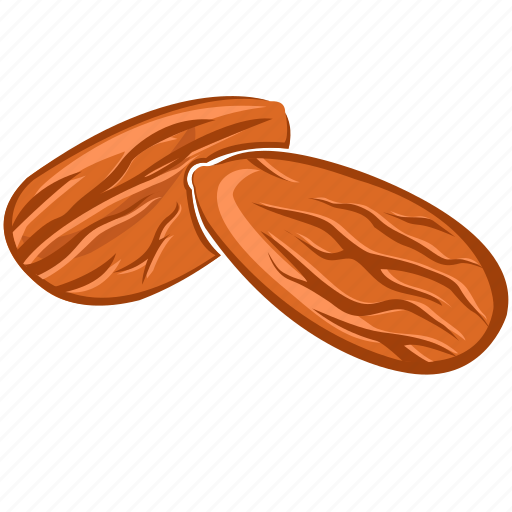 almond, dry fruits, dry fruits icon, food, nut icon