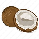 coconut, dry fruits, dry fruits icon, food, fruit icon