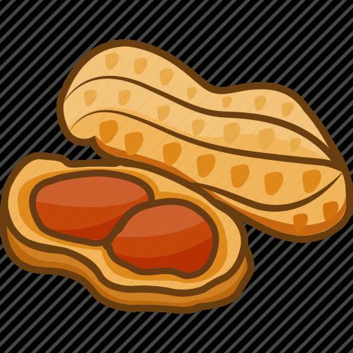 dry fruits, dry fruits icon, food, legume, peanut icon