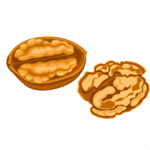 dry fruits, dry fruits icon, food, nut, walnut icon