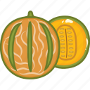 cantaloupe, cantaloupe juice, food, fruits, fruits icon, healthy food icon