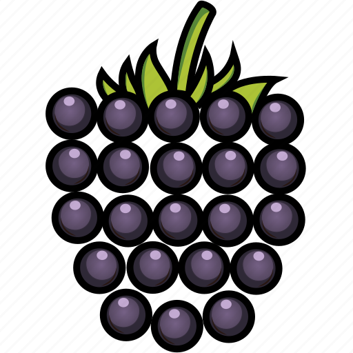 blackberry, blackberry juice, food, fruits, fruits icon, healthy food icon