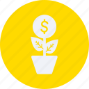 business, cash, currency, finance, growth, money icon
