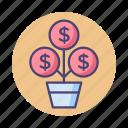 growth, money plant, money tree icon