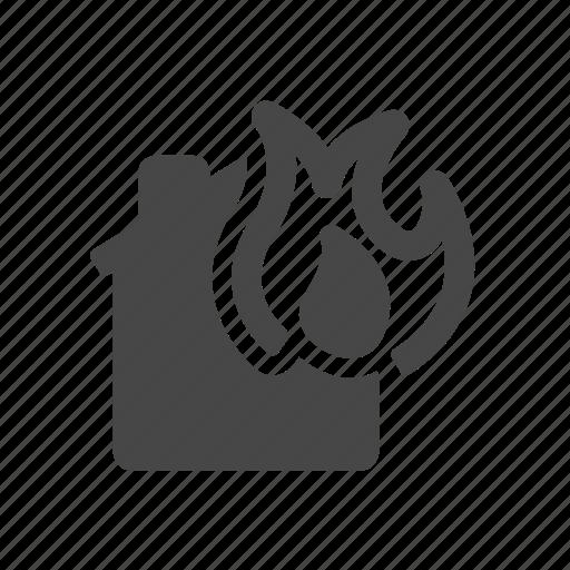 burning, damage, fire, flame, heat, house icon