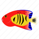 angelfish, fish, flame, pet icon