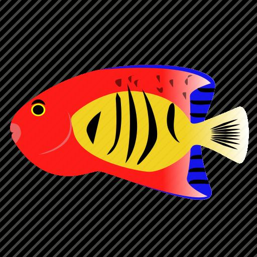 angelfish, fish, flame, pet icon