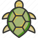 green, loggerhead, marine, sea, turtle
