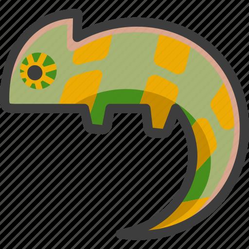 chameleon, lizard, namaqua, reptile icon