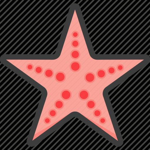 linckia, seastar, starfish icon