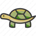 green, land, turtle