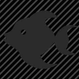 aquarium, cartoon, fish, gold, type icon
