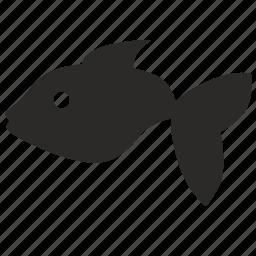 aquarium, child, decorative, fish, kid icon
