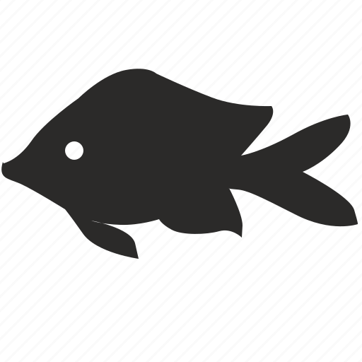 aquarium, decorative, fish, gold, type icon