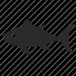 fish, ocean, predator, tuna icon