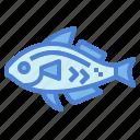 animals, fish, food, life, sea icon