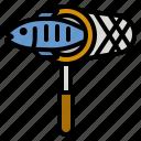 net, fishing, hobbies, fish, sport