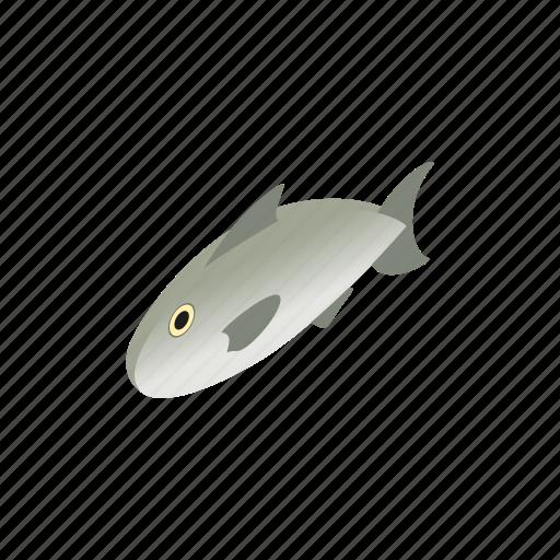 fish, fishing, food, healthy, isometric, nature, sea icon