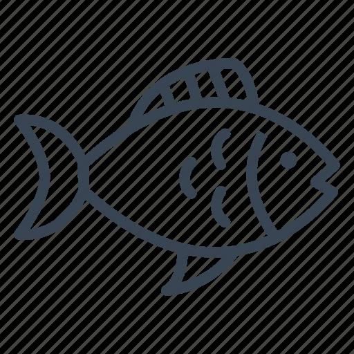diet, fish, healthy, protein icon
