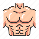 anatomy, body, chest, exercise, fitness, muscle, strong icon