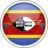 circle, country, flag, national, swaziland icon