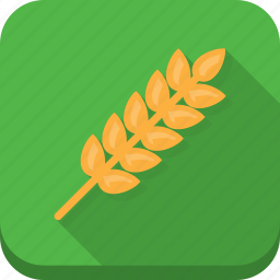 baking, green, nature, wheat icon
