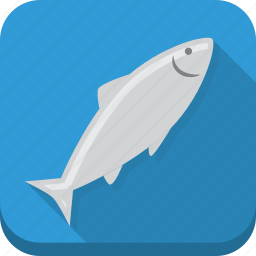 blue, fish, food, ocean, sea, seafood icon
