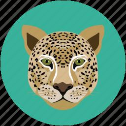 animal, tiger, tiger face, wild animal icon
