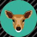 fox, grid, jungle, mammal icon