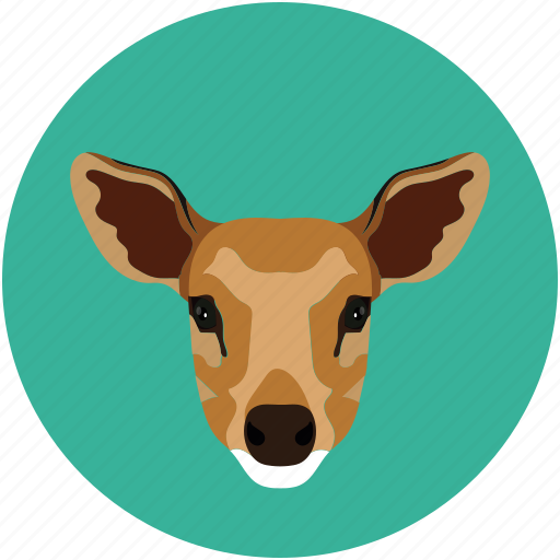 fox, grid, jungle, mammal icon