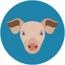 pig, pig face, piggy, pork icon