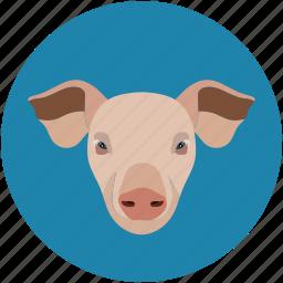 pig, pig face, piggy, pork icon