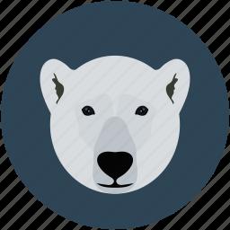 bear, bear face, bear ficial, grizzly icon
