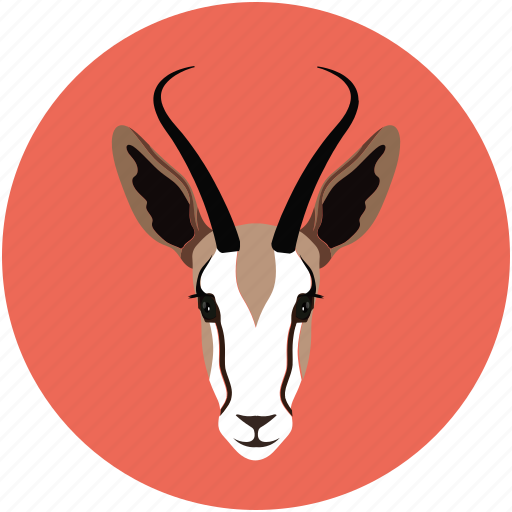 cabra, goat, goat baby, goat face icon