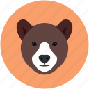 animal, bear, jungle, safari, zoo icon