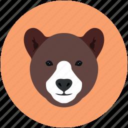 animal, bear, jungle, safari, zoo icon